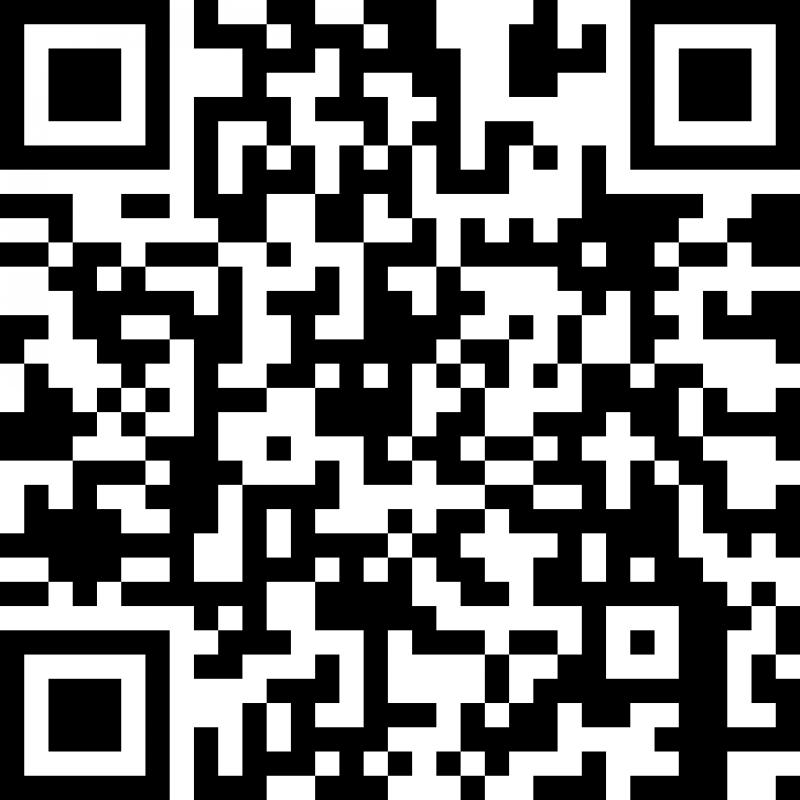 智慧MINI国际二维码