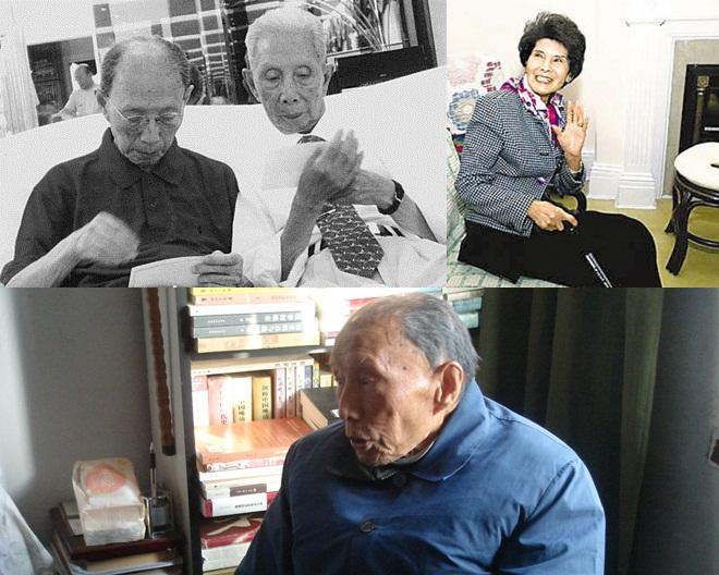 左上:陆久之(右)、陆立之(左)兄弟;右上:陈瑶光;下:陆立之。