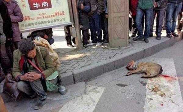 闹市,流浪汉与被打死的狗
