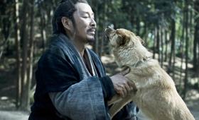 《楚汉传奇》中大黄狗的戏份就是临场加的