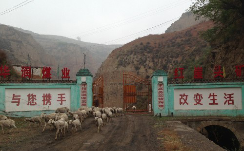 华润在山西高价收购的矿场沦为放养场