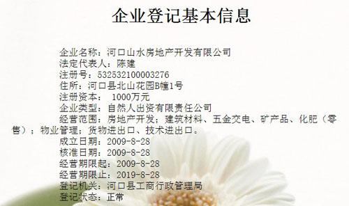 山水房地产公司的工商注册信息