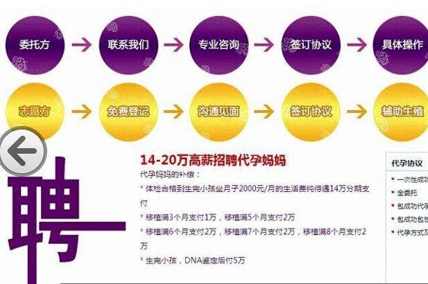 某代孕网站介绍的代孕流程