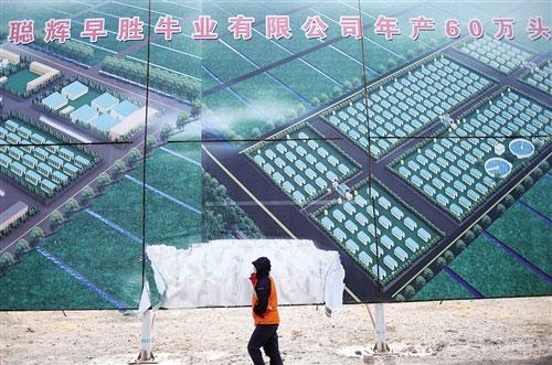 """甘肃永昌""""年产60万头肉牛""""项目的广告牌"""