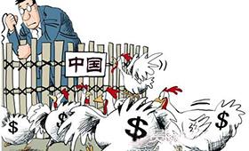 来中国捞金,已成外籍电影人赚快钱的通病