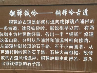 塘溪镇邹溪铜弹岭环线爬山<br>