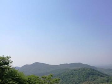 徒步体育公园,灵谷寺,中山陵,植物园