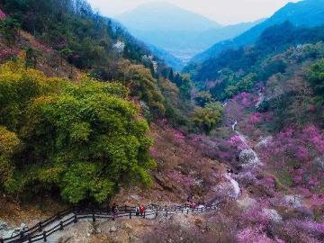 周末彭州丹景山徒步一日游