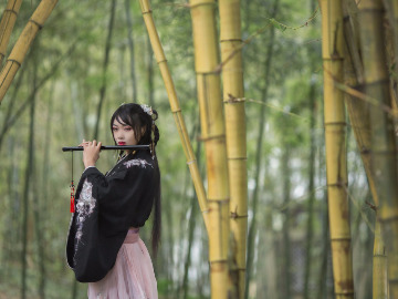 华阳湿地免费交友摄影活动——东莞麻涌镇