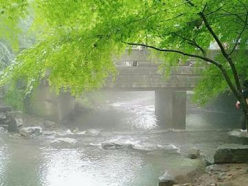 5/13九溪十八涧、十里琅珰、西湖一日游