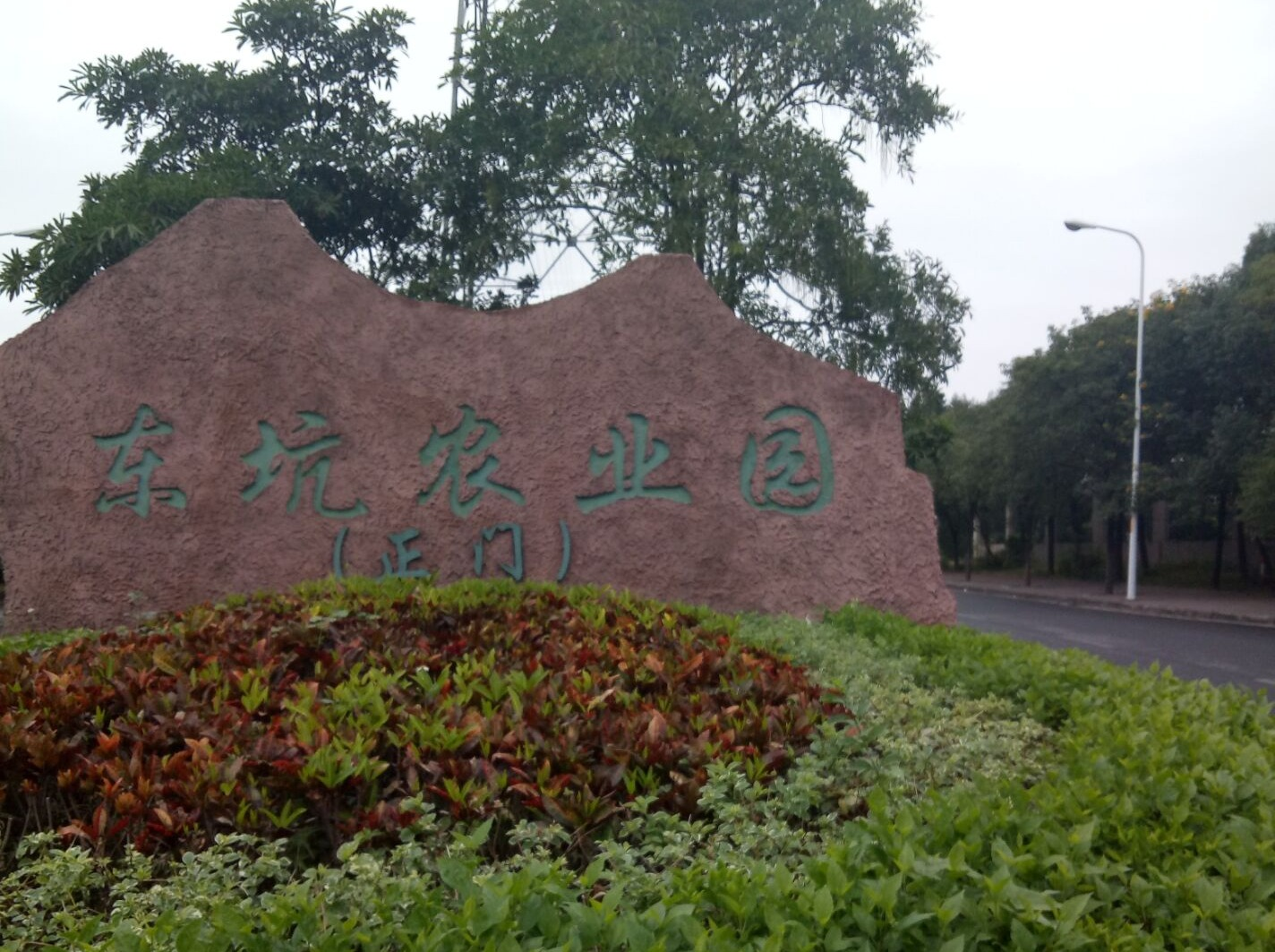 23日东坑农业园野炊,休闲游园