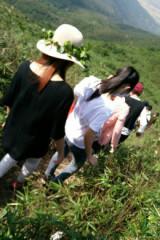 5.1号爬黄杨山