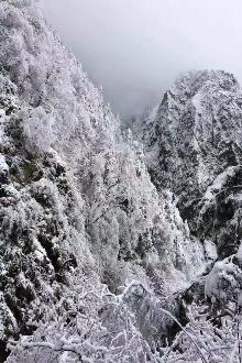 九峰山耍雪