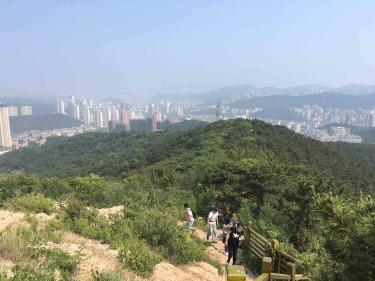 枫林山爬山活动