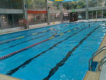 碧波池游泳爱好者免费陪教新人