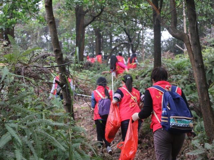 【1月5日】广州义工白云山环保清理山野