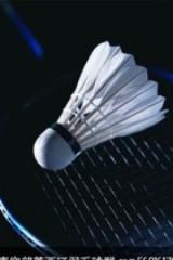 每周一晚上羽毛球2小时不要乱报(长期活动)