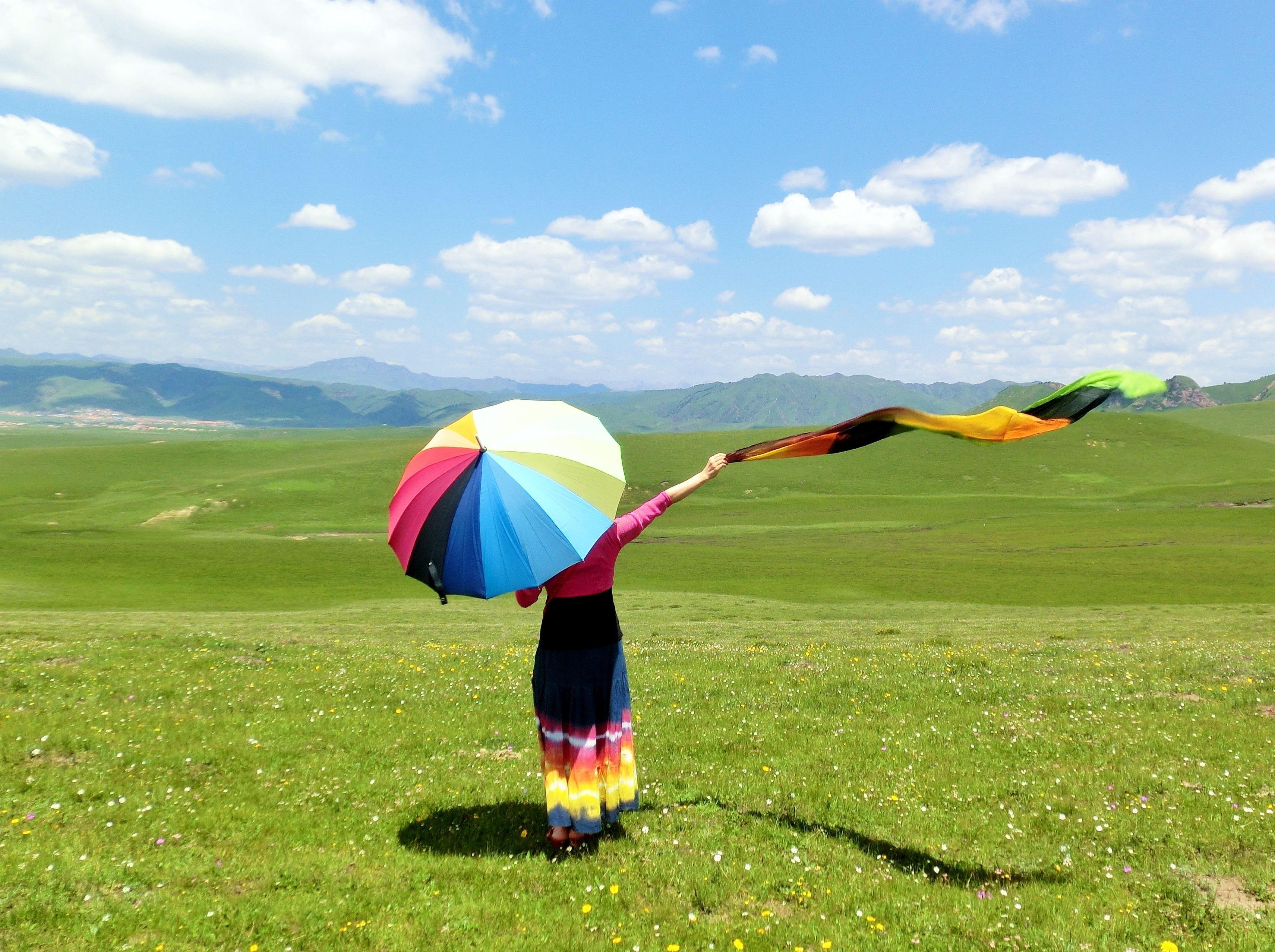 草原花季:若尔盖草原 花湖 红原3日