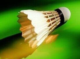 1月6号星期六 省体育馆羽毛球活动