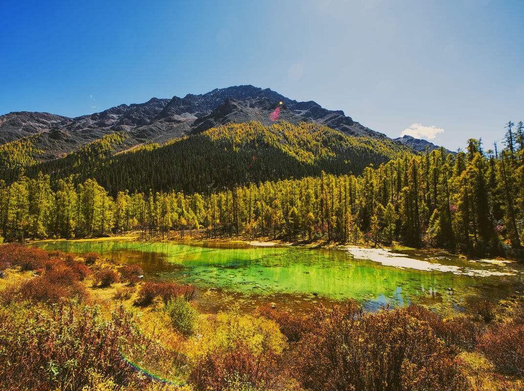 玛嘉沟 秘境秋色层林尽染 国庆每天出发