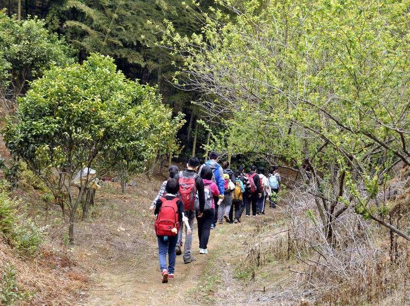 周六 斜源、大龙山徒步穿越1日游