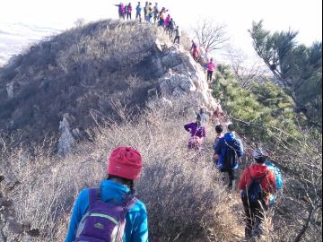 稻草人户外周六棒槌岛-老虎滩爬山徒步活动