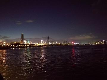 深圳湾到红树林徒步