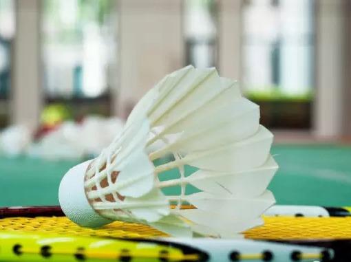 周二【羽毛球】羽毛球运动