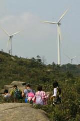 3月12日横琴脑背山踏青,看风车