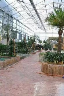 12月17日刚开业的龙派温泉特惠一日游