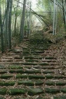 正月十四(10日徒步东江村→印家坑村环线