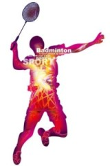 2月12号周日羽毛球活动