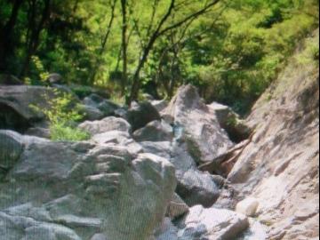 5月7日八大炕瑞岩诗九峰之巅梅园九峰山