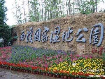 杭州西溪湿地踏春寻梅