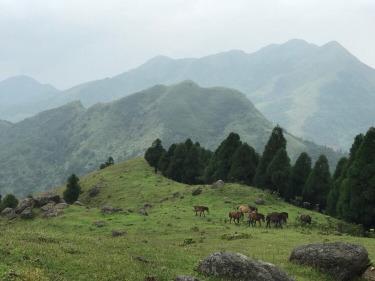 山水相伴,乐享自然 —-龙树顶登山