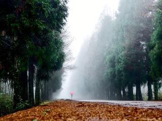 深秋的山王坪