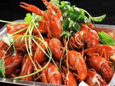 吃货群第一期,一起免费吃龙虾