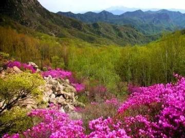5.12号喇叭沟门北京最美的原始森一日游