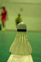 6月4周日晚上七点羽毛球活动