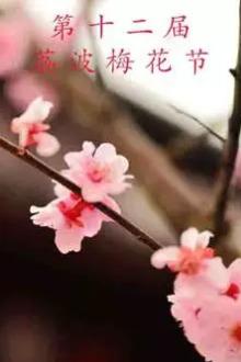 荔波—寻梅香-富氧万人徒步活动