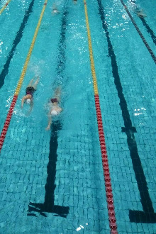 成都游泳村2月22日游泳活动
