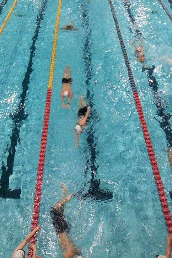 成都游泳村2月6日游泳活动