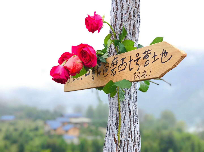 若丁山网红营地 磨西古镇2日 国庆每天走