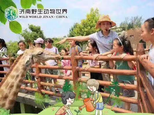 济南野生动物世界研学一日游