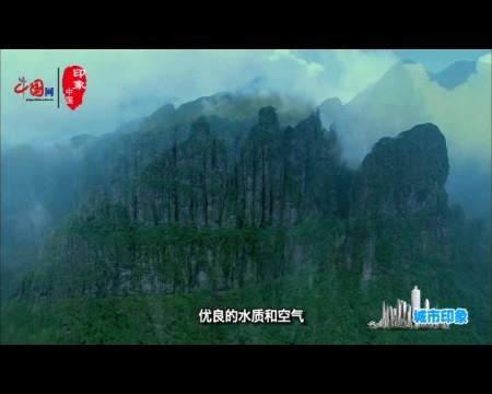 【广西】西江明珠 龙腾梧州