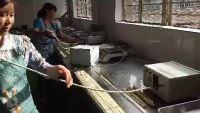 手工麻花扭绕机75g馓子麻花制作方法