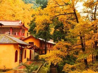 白岩寺休闲徒步一日游