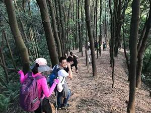 11.3 广州龙眼洞森林公园 龙鱼线徒步