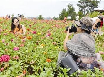 4月7日帅哥美女春季赏花之旅
