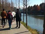 1月14日周日佘山到广富林郊野公园徒步
